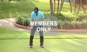 Einarmstreckung - Golf - Funktionen verstehen und gezielt trainieren