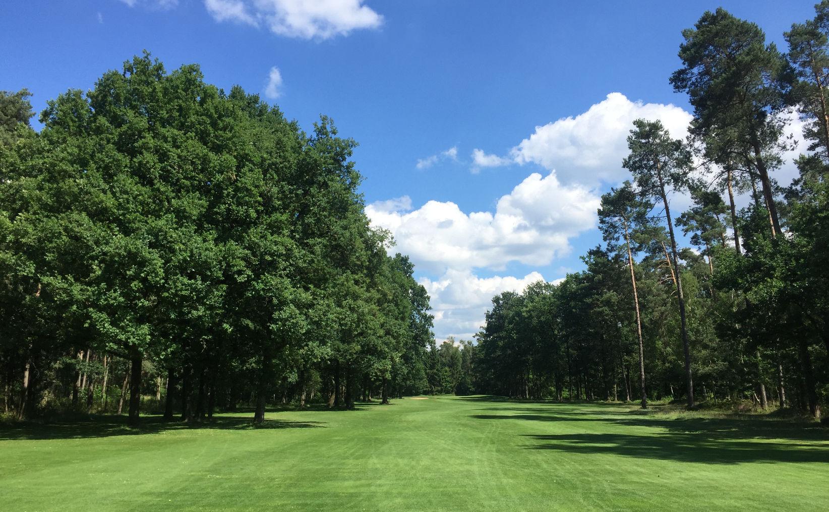 Golftraining - Schmale Golfbahn